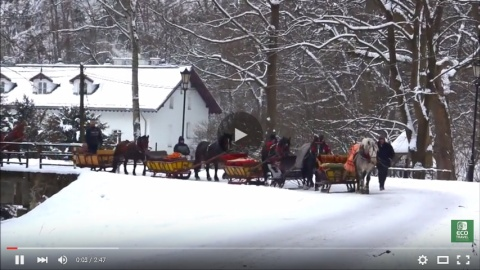 Sleigh Riding Tours in Ojcow National Park [video]